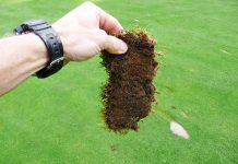 Jak vypadá golfový divot