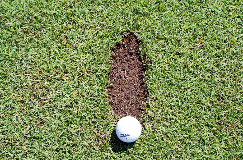 Co je to golfový divot a řízek